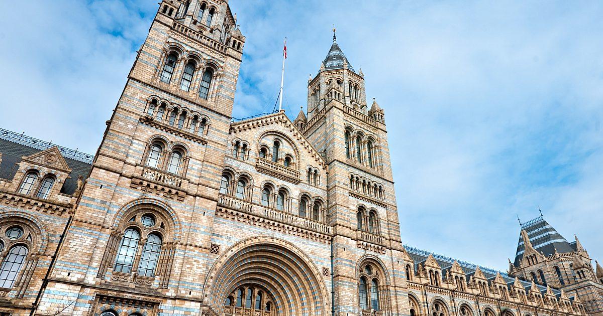 Full Summer Curriculum at University College London   API Abroad
